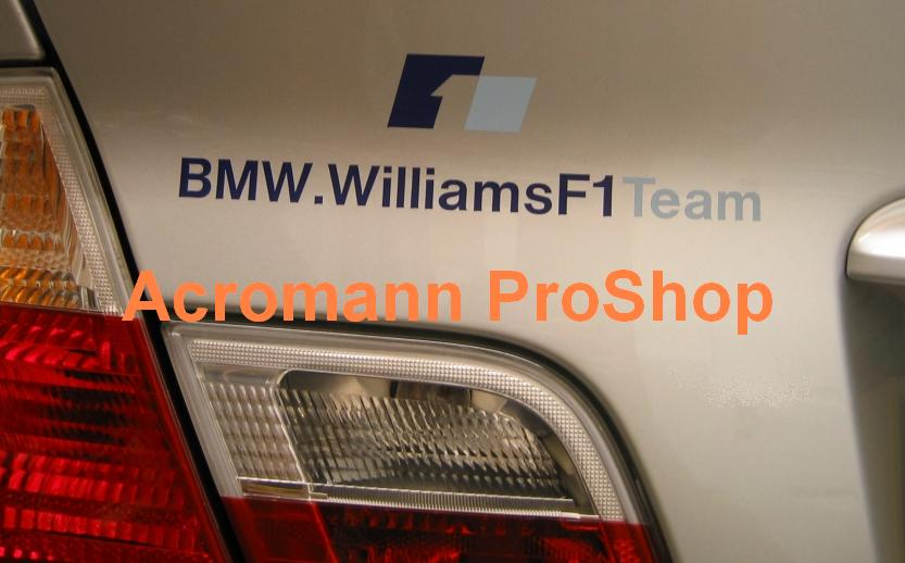 BMW Williams F1 Team 6inch Decal x 2 pcs