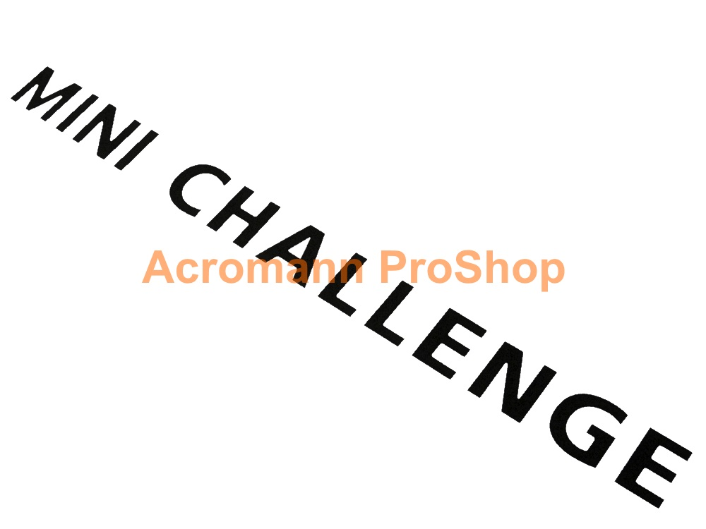 MINI CHALLENGE Windshield Decal (Style#3)