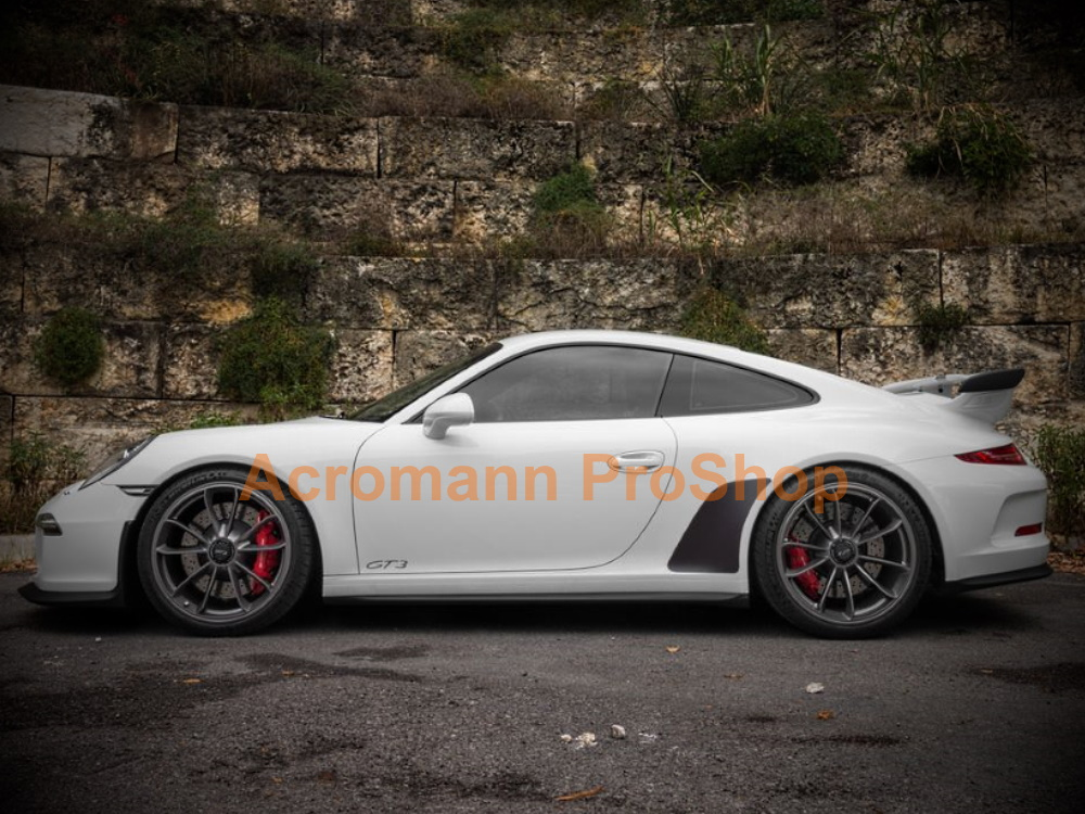 Porsche 911 991.1 .2 GT3 Stone Guards Chip Film Clear Bra Decals