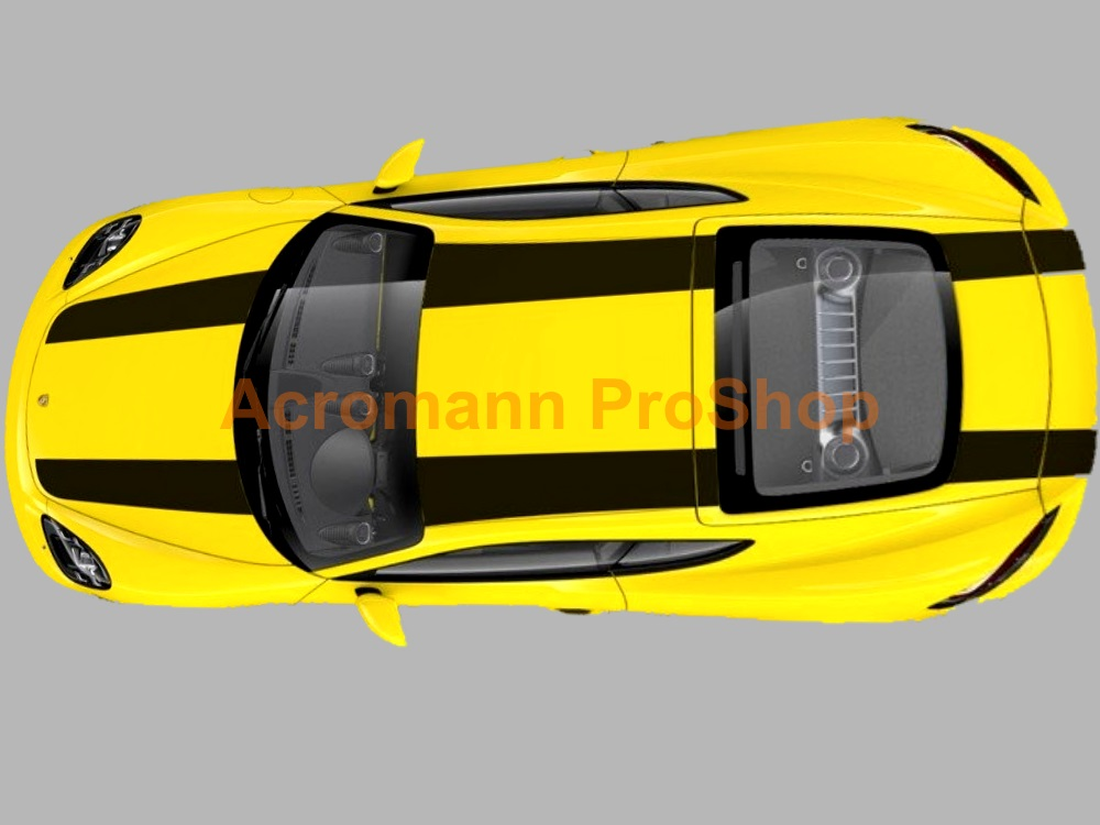 Porsche 981 Cayman Whole Body Stripes (Style#1) x 1 set