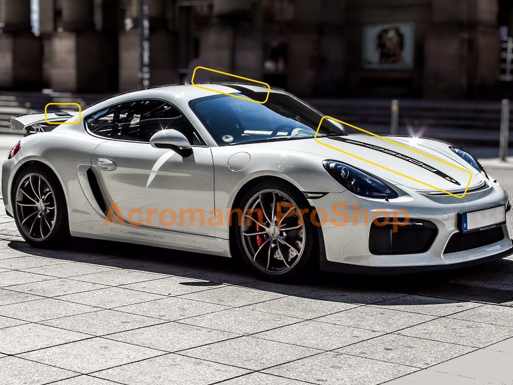 Porsche Motorsport GT4 Style Whole Body Stripes x 1 set (middle)